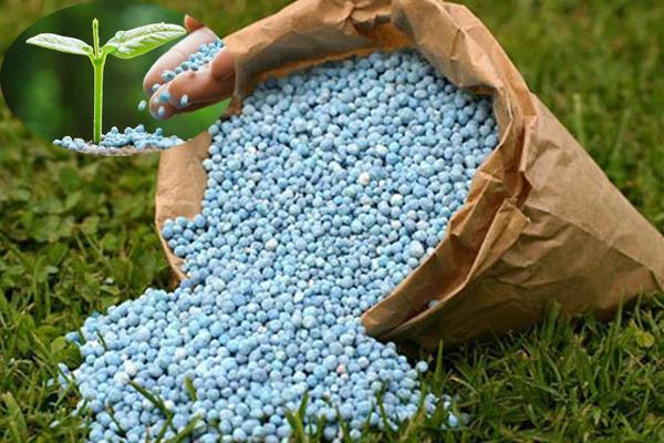 Phosphoric Acid Uses in Fertilizer